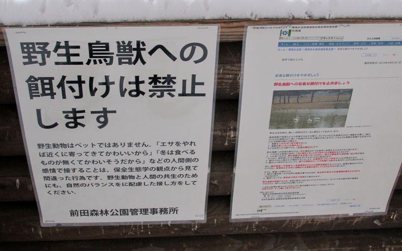 餌付け禁止警告ポスター